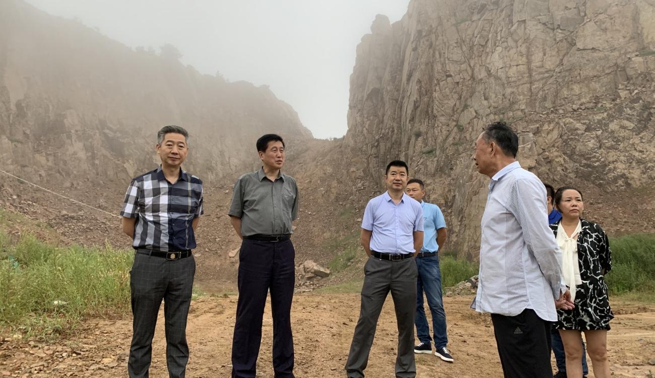 我院调研山东省矿山生态修复项目